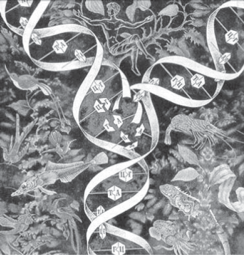Схема репликации ДНК